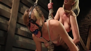 Hard slamming together with Mona Wales plus Cherry Torn